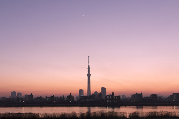 夕景の東京スカイツリー 日没瞬間の美しい空