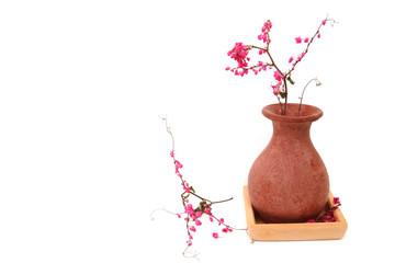 dry coral vine in vase