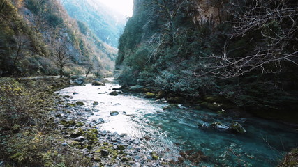 Mountain River in Gorge