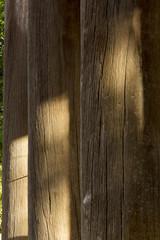 世界遺産東大寺南大門の柱