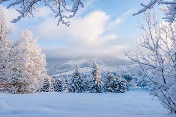 Piękna zima w Beskidach