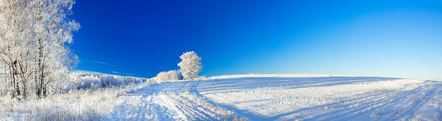 rural winter landscape a panorama with the blue sky, a field and © yanikap