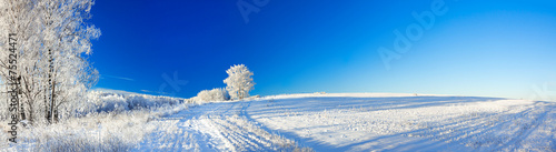Leinwanddruck Bild rural winter landscape a panorama with the blue sky, a field and
