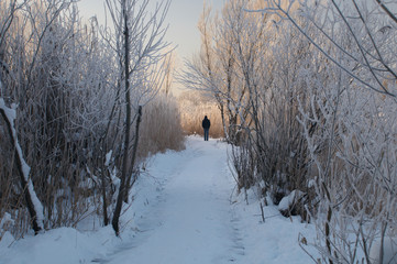 Man on pathway