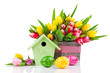 Easter eggs with tulips flowers and birdhouse, on a white backgr