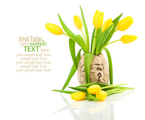 tulips in a vase isolated on white background