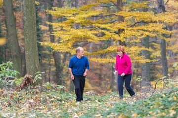 Seniors couple jogging