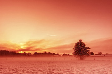 rote Winterlandschaft
