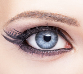 Closeup eye-zone make-up