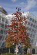 ������, ������: Unilever Haus in der Hamburger Hafencity Deutschland