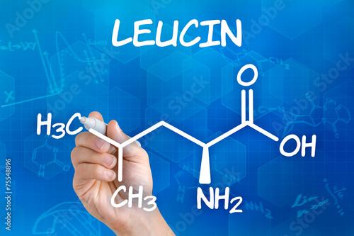 Hand mit Stift zeichnet chemische Strukturformel von Leucin
