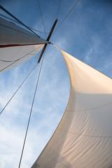 White sails against blue sky