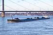 Frachter mit Kohle auf dem Rhein bei Düsseldorf - 75550820