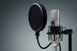 Studio microphone - 75551273