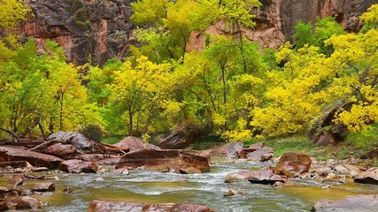 Rainy Day on the Virgin River in Zion Canyon