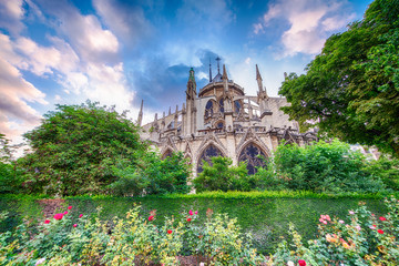 Beautiful Notre Dame Cathedral view with garden and flowers - Pa