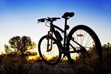 bicicleta de montaña en el paisaje
