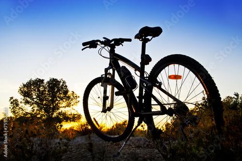 Canvas Wielersport bicicleta de montaña en el paisaje