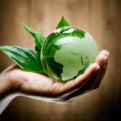 glass globe in hand green bio