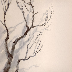 Watercolor painting. Bare branches of an old tree