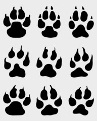 Black print of paw on white background, vector