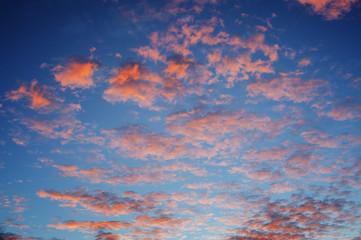 cirrocumulus clouds sunset