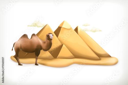 Egyptian pyramids, vector illustration - 75563037