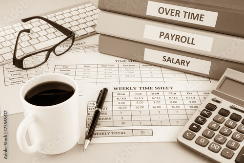 Payroll time sheet for human resources, sepia tone - 75565417