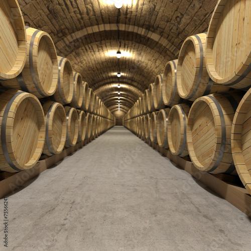 Wine cellar - 75566241