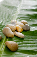 pile of stones on wet banana leaf