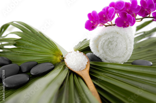 Poster Spa Red orchid and roller white towel on green palm