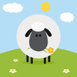 Cute White Sheep With Flower On A Hill.Modern Flat Design