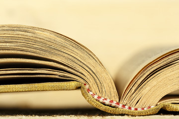 The book is open