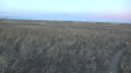 Pan of Dog Moon in Background