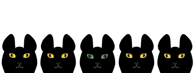黄色い目の黒猫と緑の目の黒猫