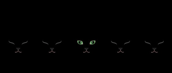 緑の目の黒猫