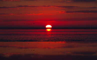 Red sunrise over sea at ebb tide