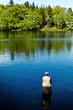 Pêcheur lac