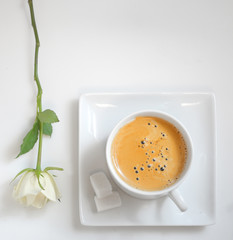 view of  coffee cup with white rose