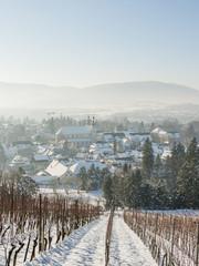 Arlesheim, Dorf, Morgensonne, Weinberg, Winter, Schweiz