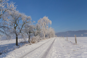 Winter country side
