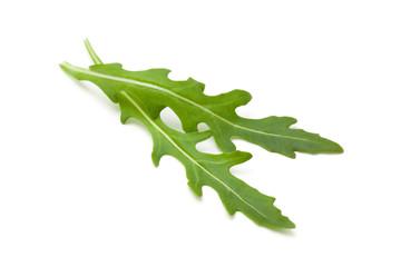Fresh arugula leaves.