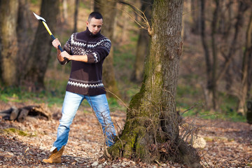 Lumberjack cutting the tree with axe in the forest