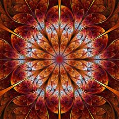 fractal rosette