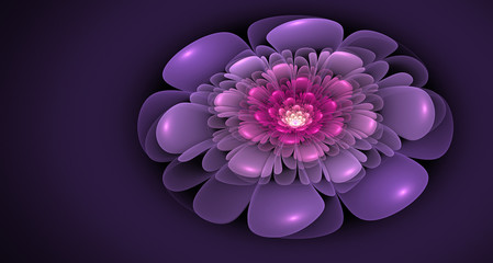 pink and violet 3d fractal abstract flower