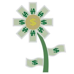 money flower nature isolate icon