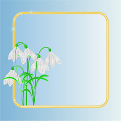 Snowdrops spring flower frame place for text vector