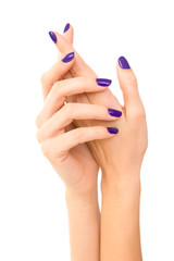 Beautiful Woman hands with purple manicure. Hand care. white bac