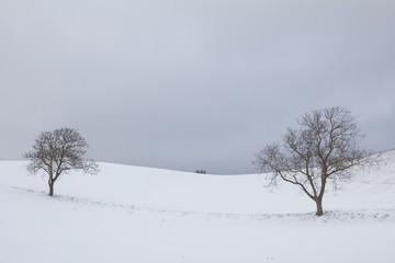 Paesaggio rurale umbro in inverno