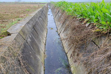 drainage ditch